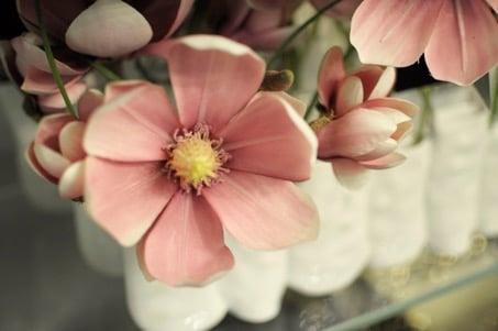 Au pays des fleurs-4