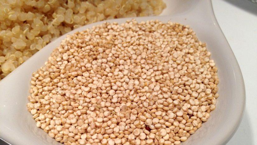 quinoa-405538_960_720
