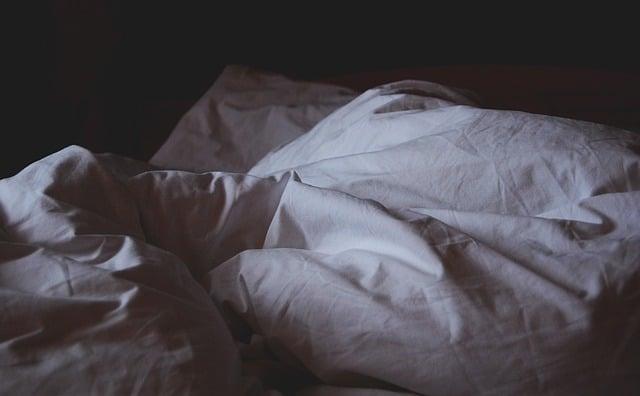 solutions punaises de lit